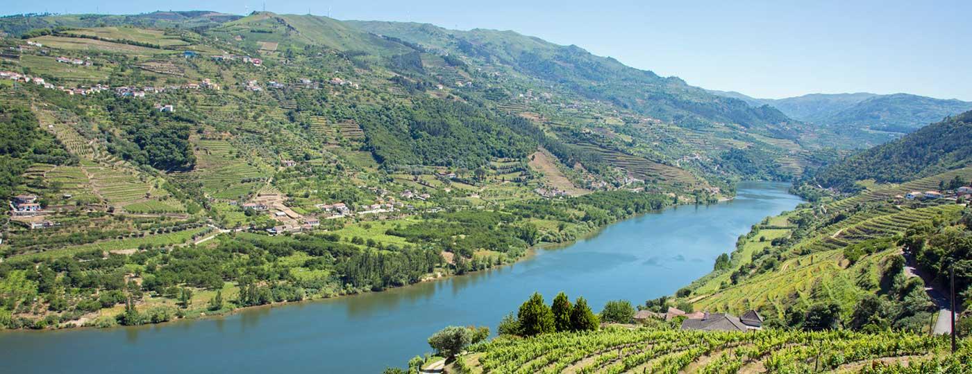 port wine and douro valley
