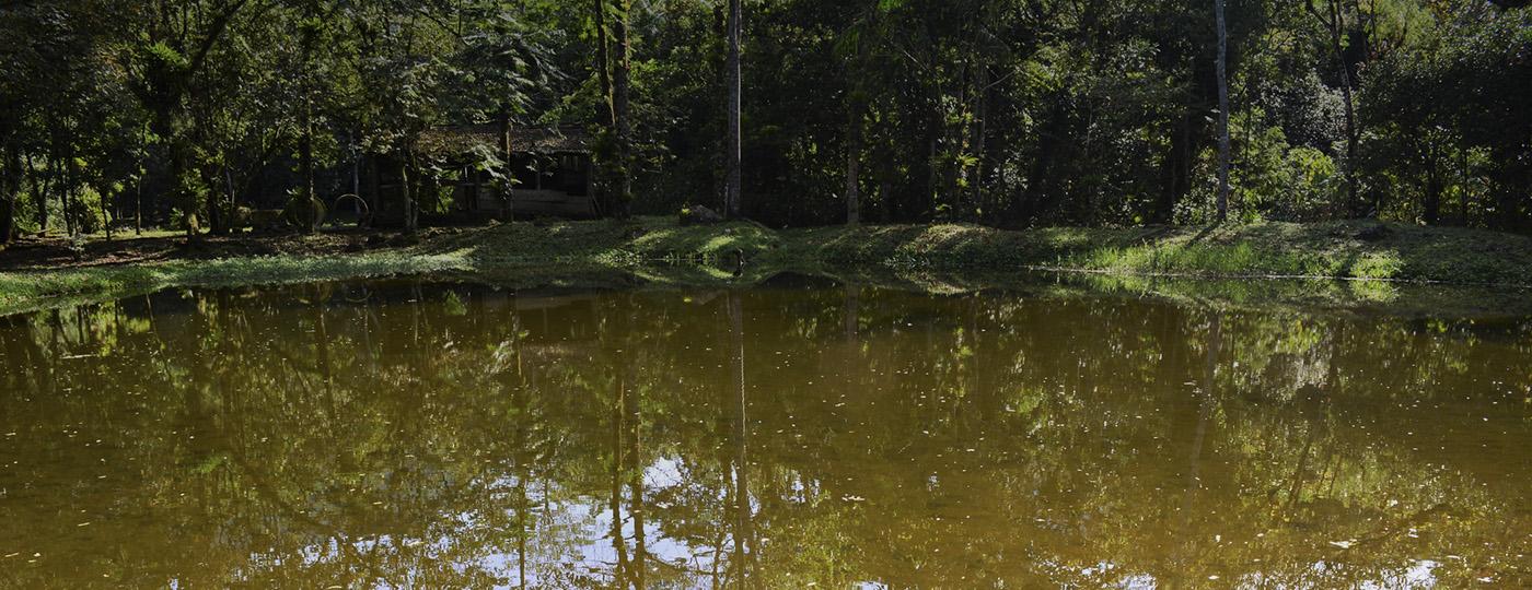 Parques em Joinville